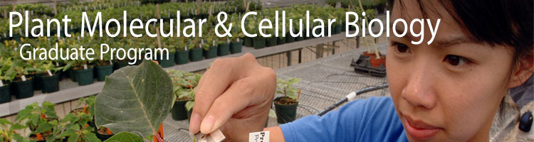 Plant Molecular and Cellular Biology Graduate Program